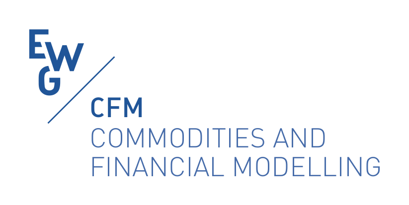 EWG CFM, EURO working group on Commodities and Financial Modelling