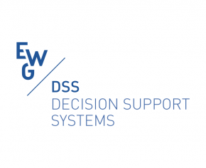 EURO Working Group on Decision Support Systems